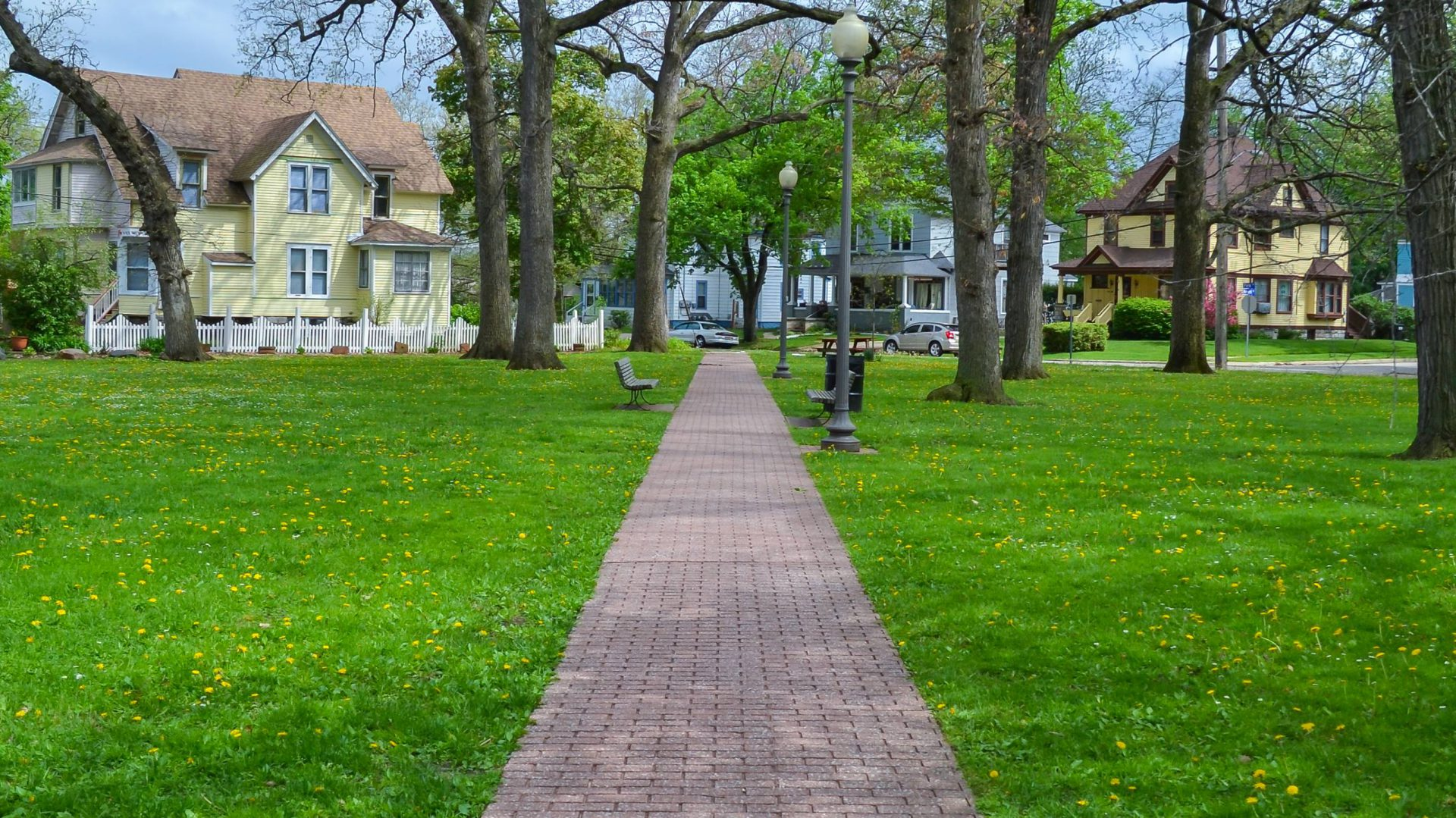 Vine Neighborhood Association